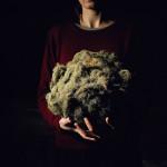 Boule de lichen trouvée dans la forêt au dessus de St-Luc, Février 2016 – © EQ2 – Anne Golaz